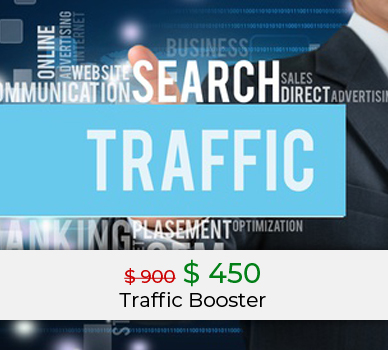 traffic booster business