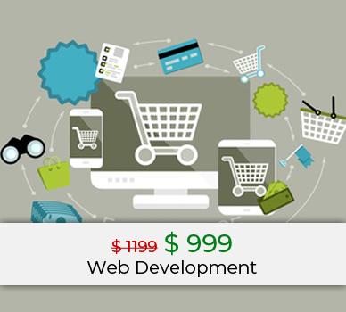 web development ecommerce