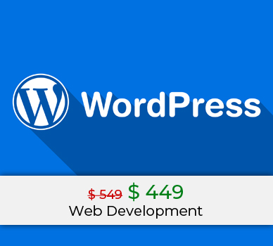 web development wordpress